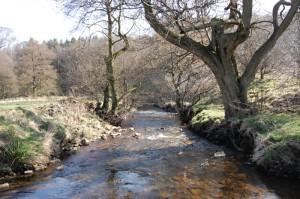 A nice stream, but beware the bog ahead